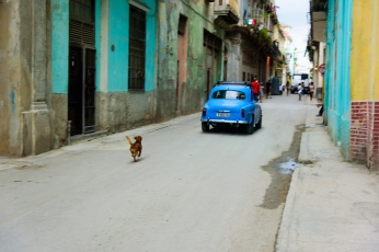 Cuba100