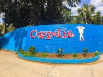 coppelia1